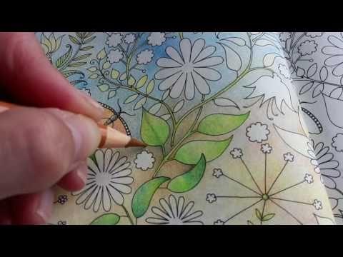 Secret Garden Step Dy