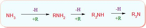 CBSE Class 12 Chemistry Notes: Unit 13 Organic Compounds containing Nitrogen