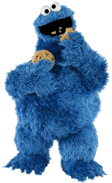 22 best cookie monster images on pinterest