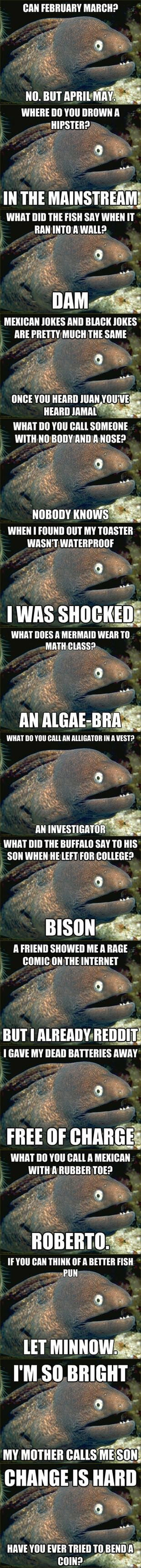 "Best Of, ""Punch Line Eel Meme"" – i love this"