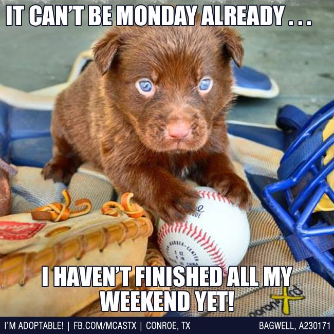 24 best images about Mondays , blah!! on Pinterest  Mondays, Ruins and ...