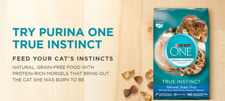 Free Purina One True Instinct Cat Food Samples - https://dealmama.com/2018/03/free-purina-one-true-instinct-cat-food-samples/