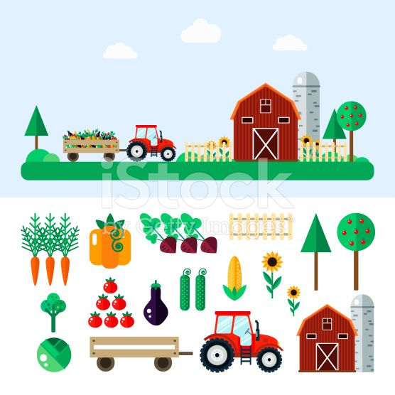 Farm with tractor, vegetables, barn, trees. royalty-free stock vector art