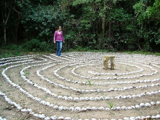 Platbos Indigenous Forest. Enjoy a shady walk along the Forest Trail, including viewing platform and labyrinth