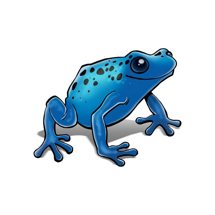 Perfect Earth - Poison Dart Frog