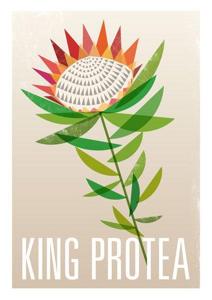 Ink & Spindle - 'King Protea' Artist Print