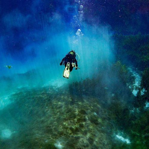 La magie des accessoires et des appareils étanches : donner une toute nouvelle dimension à vos reportages de voyages. Photo : Vetdiver / #OlympusOMD E-M1 / M.ZUIKO DIGITAL ED 8mm 1:1.8 Fisheye PRO #fisheye #underwater #underwaterphotography #holiday #sea #beach #shotoftheday #picoftheday #OMDRevolution #Zuiko via Olympus on Instagram - #photographer #photography #photo #instapic #instagram #photofreak #photolover #nikon #canon #leica #hasselblad #polaroid #shutterbug #camera #dslr…