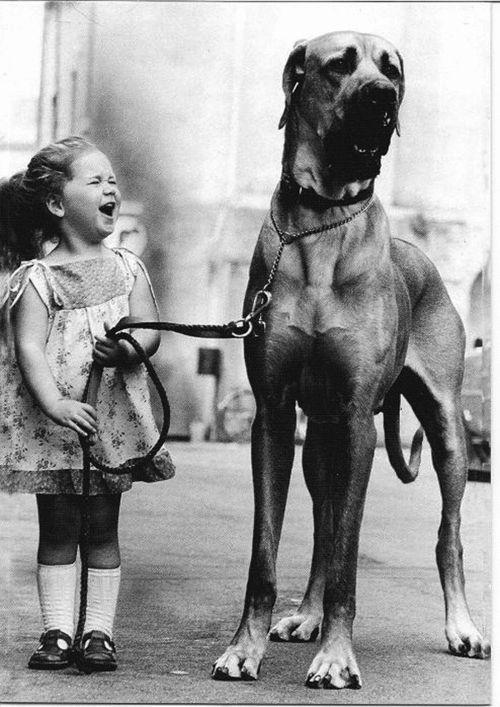 Petite fille et son gros chien