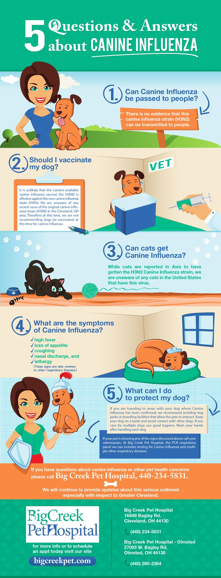 The Top 5 Questions About The Canine Influenza Outbreak Answered By an Expert Veterinarian in Cleveland, OH http://www.bigcreekpet.com/five-questions-and-answers-about-canine-influenza-in-cleveland-oh/?utm_source=pinterest&utm_medium=social&utm_campaign=Canine%20Influenza&utm_content=5%20Questions%20InfographicInDescription