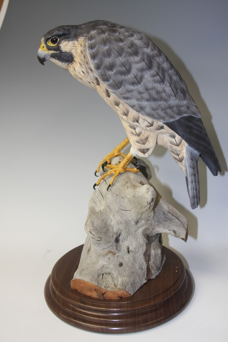 Bob hand decoys peregrine falcon painted woodcarving