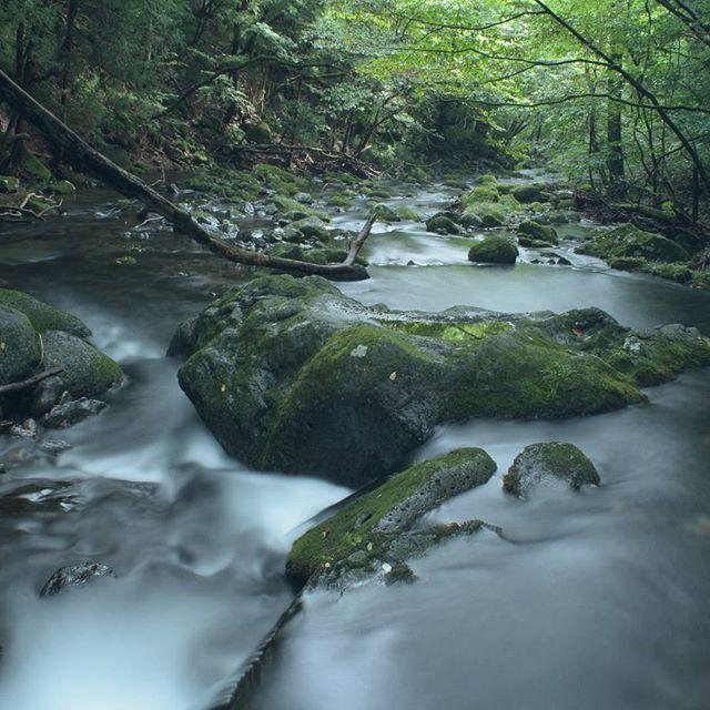 【megu.k2658】さんのInstagramをピンしています。 《相変わらず人が多い乙女の滝… お陰でこんな所があったことに感激✨🎶 #ファインダー越しの私の世界 #乙女の滝 #森林 #緑#渓流 #nasushiobarashi #スローシャッター #instagramjapan #japan_of_insta #icu_japan》