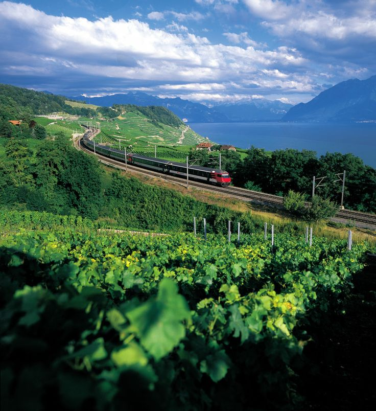 A treat to gourmet connoisseurs and the luxury of travelling on Switzerland's Scenic Routes lines aboard panoramic trains and you have an assuredly luxurious and memorable #Switzerland holiday. http://www.hitours.in/switzerland/