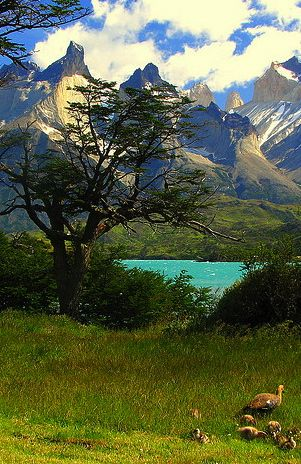 Our Magestic Cuernos in Torres del paine, Chile