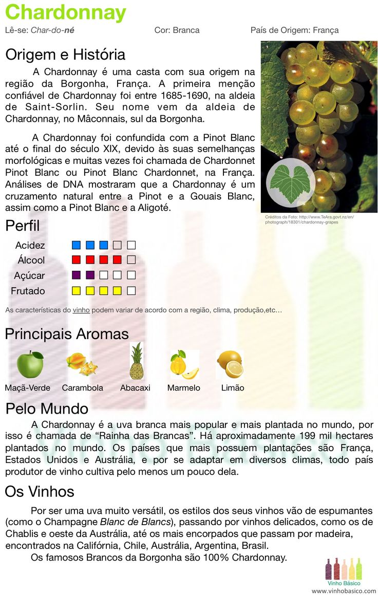 Chardonnay vinhobasico