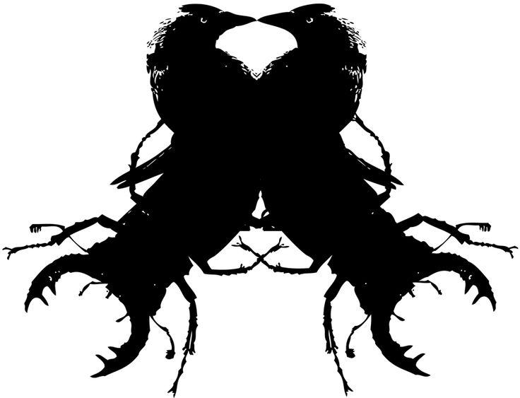 Jackdaws and beetles. Vector illustration by Anjeli Lundblad.