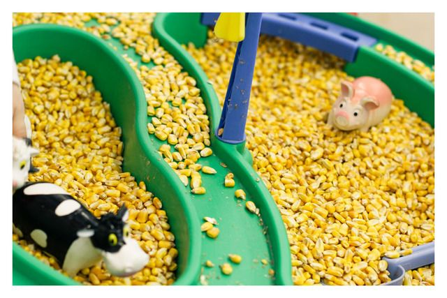 sensory table filled with corn feed, animals and tractors , party fun.