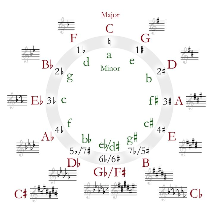 The Circle of 5ths Explained—Plus Three Ways You Can Put It to Use | GuitarPlayer