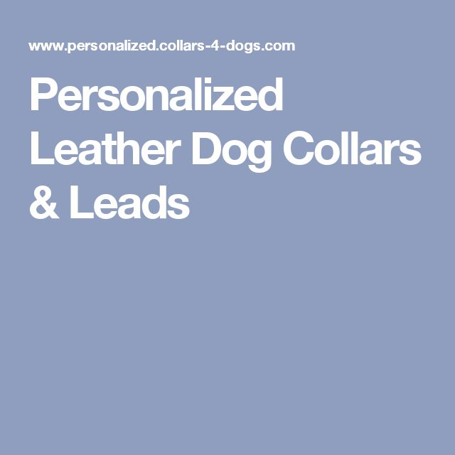Personalized Leather Dog Collars & Leads