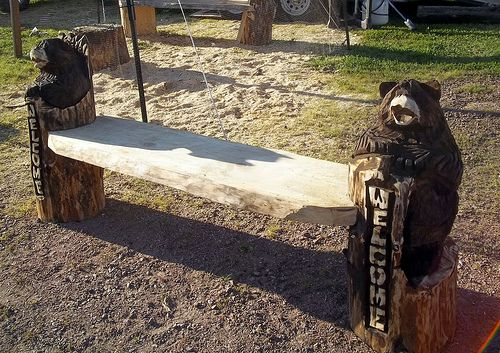 Chainsaw carved benches bench