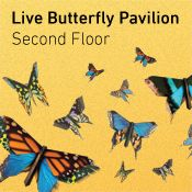 D.C.- Smithsonian National Museum of Natural History has a live butterfly pavilion!! I loved the one in Montreal!
