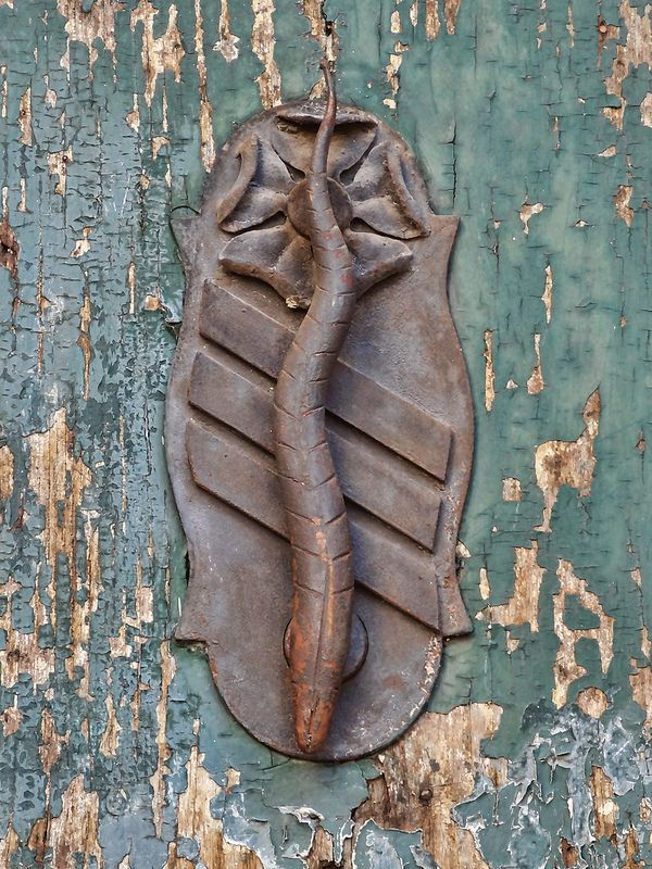 Rome Door Knocker Fish door knocker seen in the Trastevere area of Rome. Posted on   Flickr - Photo Sharing! by Terence Faircloth Looks like a salamander to me