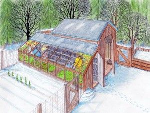 DIY Greenhouse and Chicken Coop Plans For Year Round Backyard Sustainability