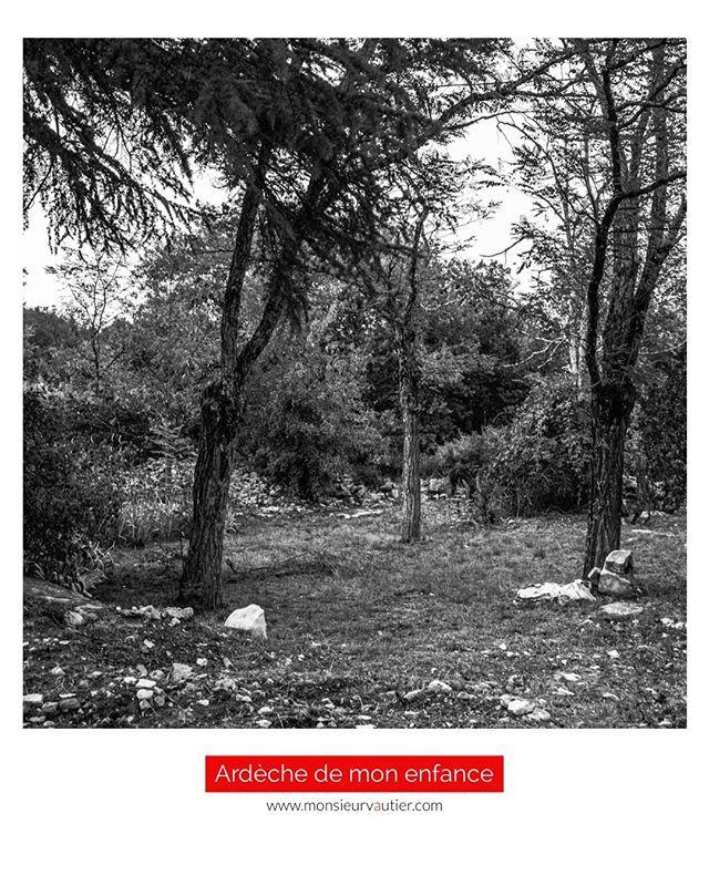 19 50 La Tente De Camping Au Milieu De Ces Trois Arbres A Quelques Dizaines De Metres De La Maison Mon Grand Pere Nous Avait Aide Instagram Country Roads Road