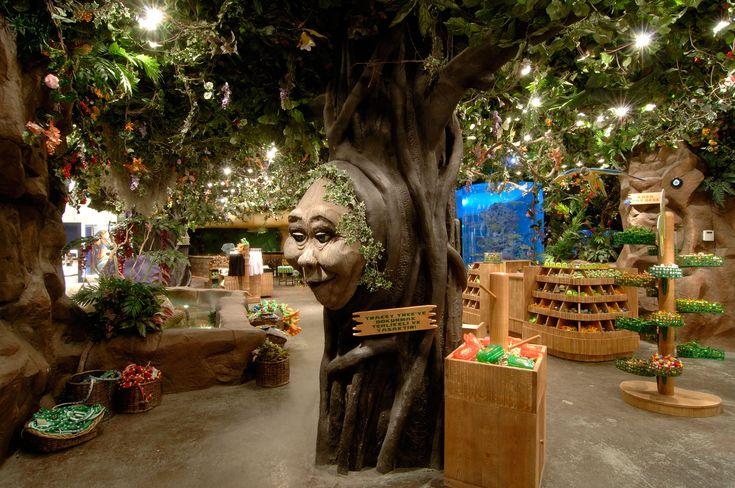 RAIN FOREST CAFE- mimari studio