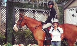 Groupon - One, Three, or Five Private English Horseback Riding Lessons at Marlowe Show Stables (Up to 59% Off) in Los Angeles. Groupon deal price: $39