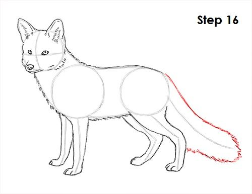 How To Draw A Fox Red Fox My Fox In 2019
