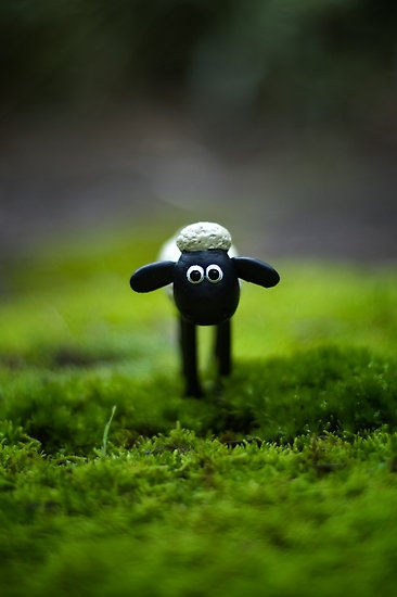 Shaun the Sheep by Sarah Moore