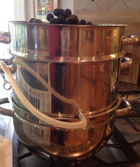 I am in love with my steam juicer. I got it last year and I did not rave enough, so I am raving again. It's a tidy grape juice making tool. I have juiced 50 pounds of concord grapes and my ha…