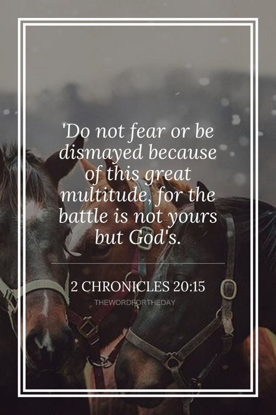 BIBLE VERSE, HORSES, BIBLE QUOTES, ENCOURAGEMENT, 2 CHRONICLES 20:5, THE WORD FOR THE DAY QUOTE