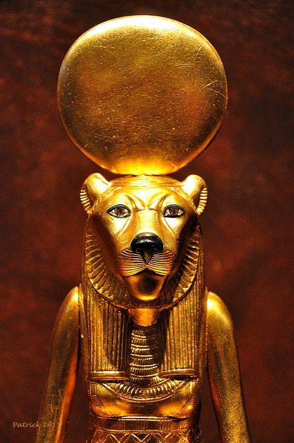 From the tomb of  King Tutankhamun