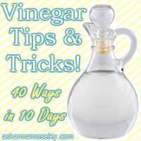 the wonders of vinegar!