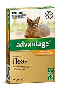 Advantage Cat 0-4Kg Small - 4's & 6's - Safe to use on pregnant and lactating animals. Kills fleas and prevents reinfestation for up to four weeks. Also kills flea larvae in pet surroundings. Convenient and easy to apply.