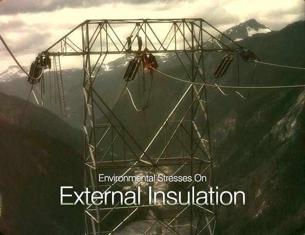 Environmental Stresses On External Insulation