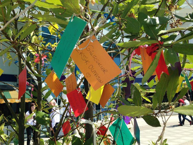 Hıdırellez dilekleriniz hazır mı? Dilek ağacımız Nautilus Meydanı'nda rengarenk ve umut dolu sizi bekliyor. Tüm dileklerin gerçekleştiği bir gün olsun! #hıdırellez #nautilusmeydanı