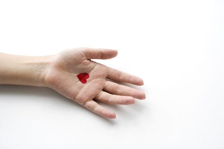 Heart on hand | free image by rawpixel.com (for free image)