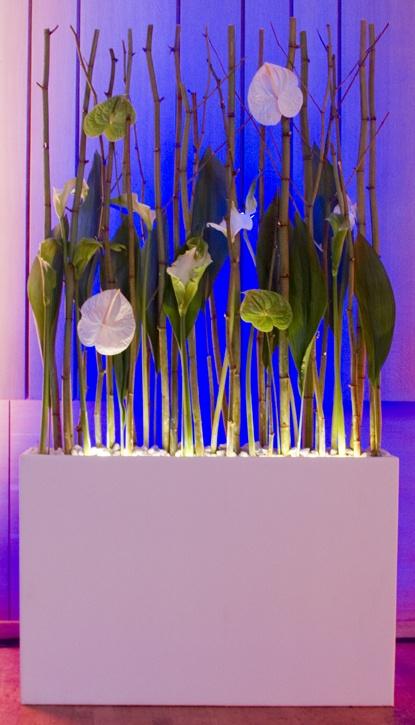 Beleuchteter Raumteiler bzw. Raumdekoelement