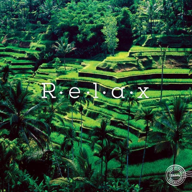 wonderful place to fill your holiday, with charming greenery and exotic tourist attractions around it, Ubud - Bali #RELAX #Holiday #Bali