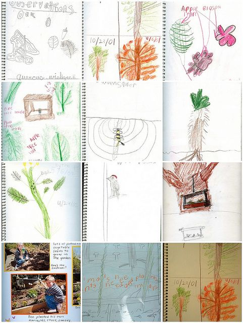 Nature Journal tips and hints on the Handbook of Nature Study.