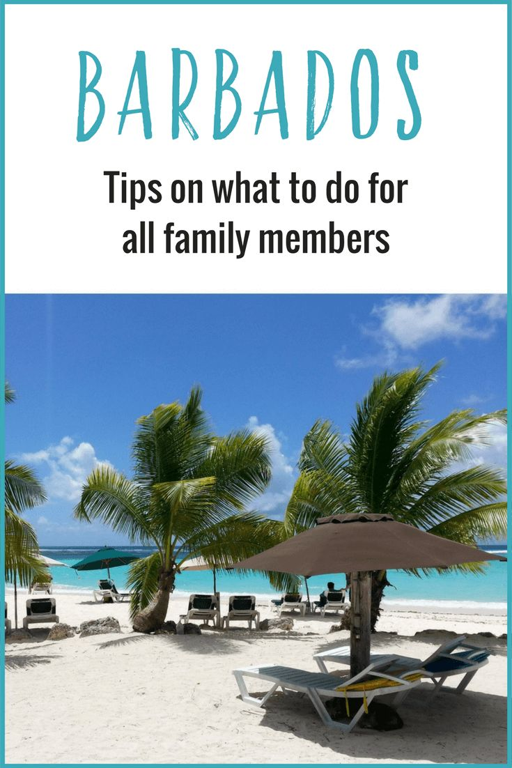 Planning a trip to Barbados? Check out these insider tips on what to do in Barbados for all the family from kids, to teens, to couples and solo travelers!
