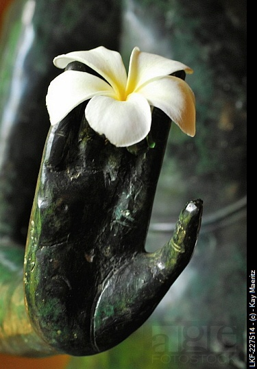 Flower at the hand of a statue, Matahari Hotel, Pemuteran, North-west Bali, Indonesien, Asia