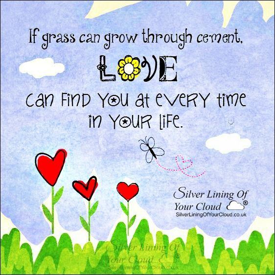 If grass can grow through cement, LOVE can find you at every time in your life. ~Cher ..._More fantastic quotes on: https://www.facebook.com/SilverLiningOfYourCloud  _Follow my Quote Blog on: http://silverliningofyourcloud.wordpress.com/