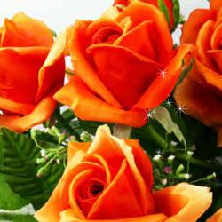 Este o zi frumoasa! Este ziua ta! La multi ani! http://ofelicitare.ro/felicitari-de-la-multi-ani/o-zi-frumoasa-722.html