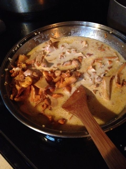 Creamy chanterelles and cream over Pappardelle   Wild ...