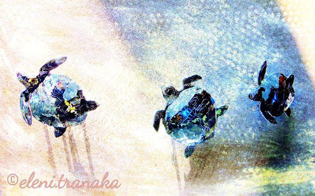 Ελένη Τράνακα: Διάφορα / Various