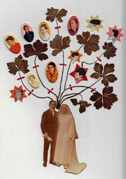 family tree idea by maissa toulet