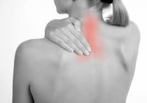 Spinal Treatment - A/C Apartment Stay 14 day treatment includes Oil Massage, Elakizhi, Kadeevasthi. Treatment is suitable for spinal complications such as Disc bulge, Protrusion, Herniation, Nerve Root Compression and for Stenosis. Vegetarian food provided. / I Deal Smarter!